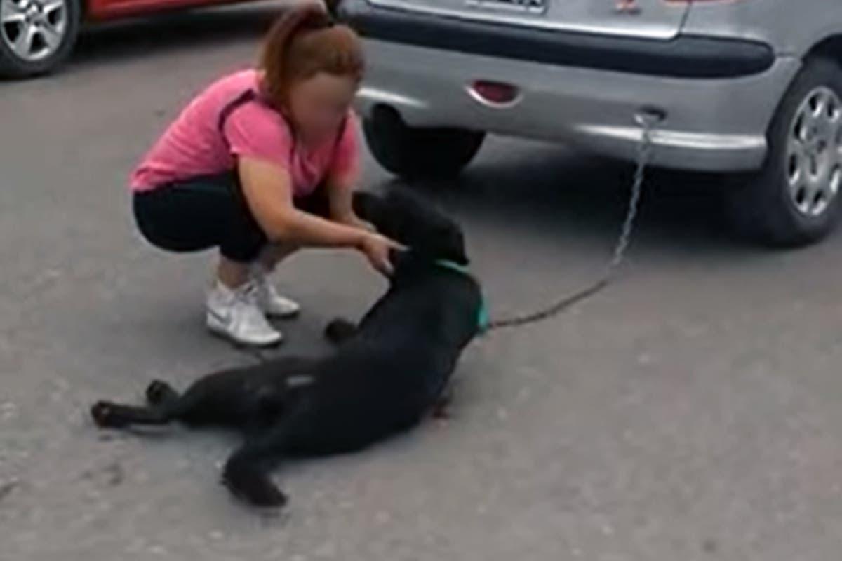 Maltrato animal en Mendoza: ató a su perro a un auto y lo arrastró siete cuadras