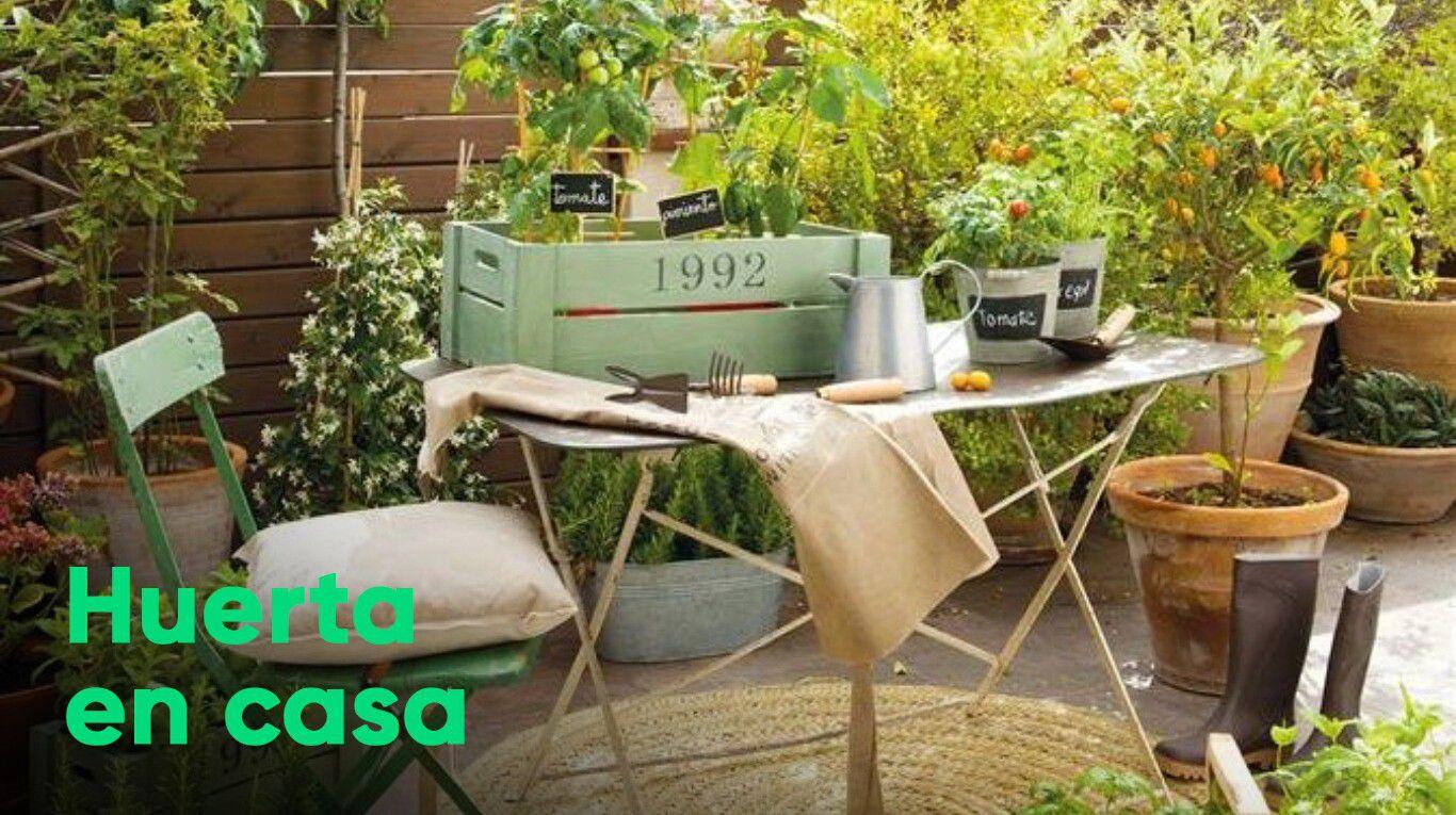 terrazas,-balcones-y-patios:-buenos-lugares-para-cultivar